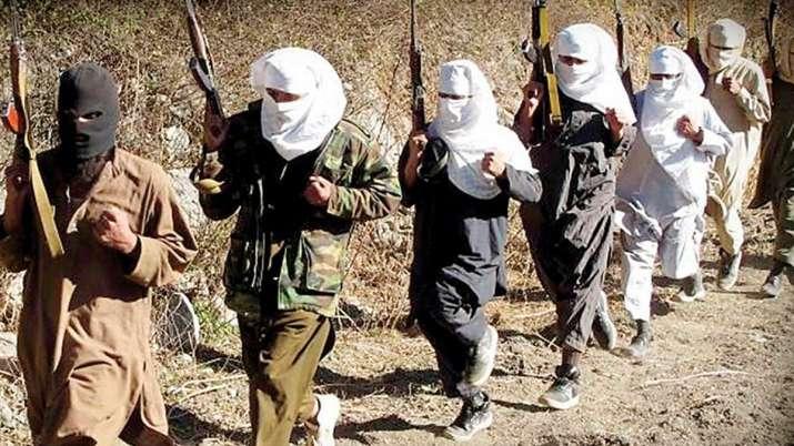शिमला समझौते से सुलझे कश्मीर मुद्दा, मुख्य बाधा आतंकवादी समूहों को पाक का समर्थन देना: US- India TV