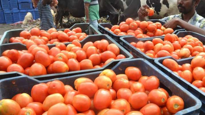 Tomato prices । Representative image- India TV Paisa
