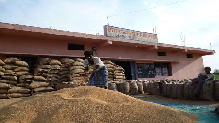Govt hikes authorised capital of FCI to Rs 10,000 cr- India TV Paisa