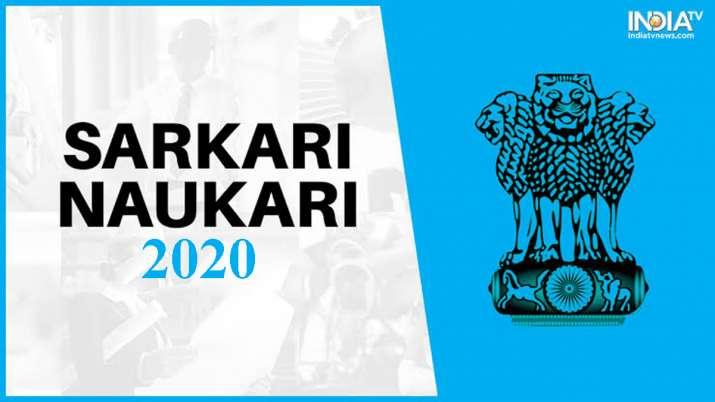 Sarkari Naukri- India TV