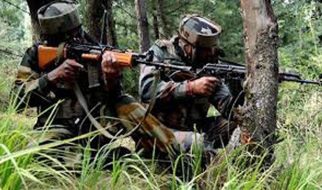 कश्मीर के जंगल में...- Khabar IndiaTV